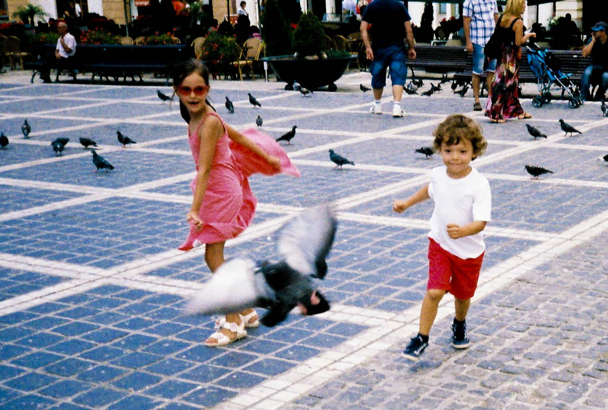 can't catch me | kids running at pigeons